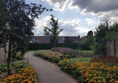 Directievoering groenrenovatie Zilverkamp – Gemeente Lingewaard