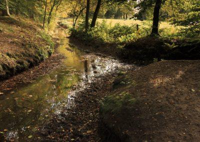 Raambestek Bos en Natuurbeheer – Gemeente Ede
